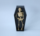 Skeleton in the coffin