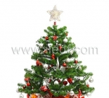 Led Star For Christmas Tree With Warm-White LEDs